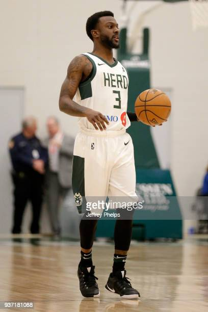 JeQuan Lewis of the Wisconsin Herd handles the ball against the Canton Charge during the NBA GLeague game on March 23 2018 at the Menominee Nation...