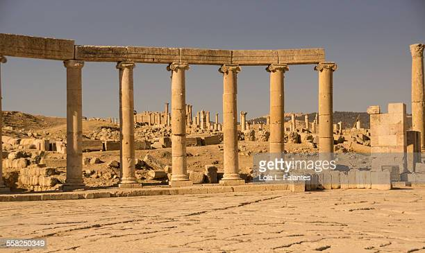 jerash, oval forum - roman decapolis city stock pictures, royalty-free photos & images