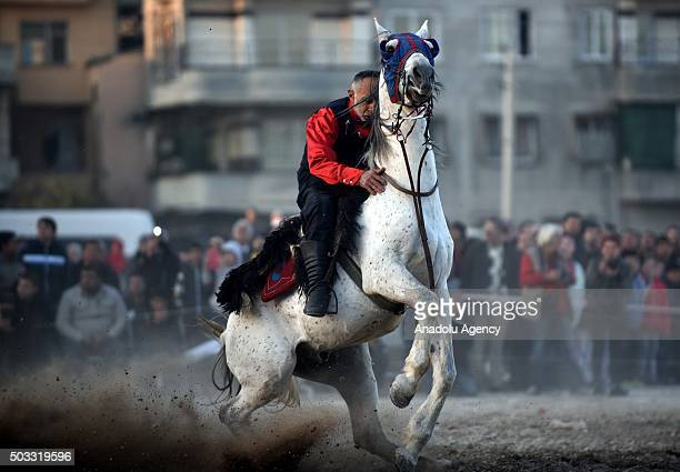 Jereed player from Erzurum Farm Sport Club is seen on his horse as he performs a ceremonial jereed game during a ceremony in Toroslar town of...