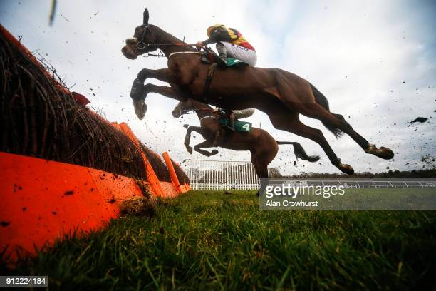 Jeremiah McGrath riding Sheâs Gina on their way to winning The 188Bet Casino Mares' Novices' Hurdle Race at Lingfield Park racecourse on January 30...