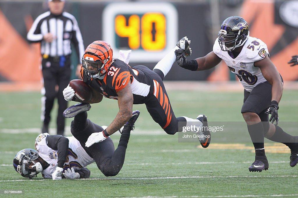 Baltimore Ravens v Cincinnati Bengals : ニュース写真