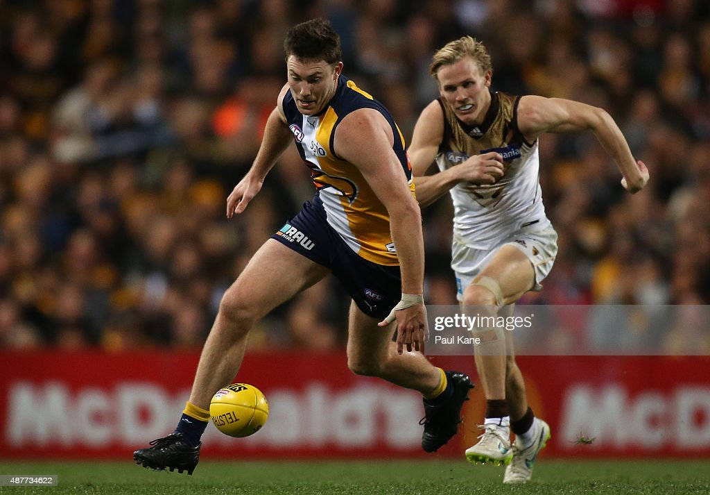 AFL 2nd Qualifying Final - West Coast v Hawthorn : News Photo
