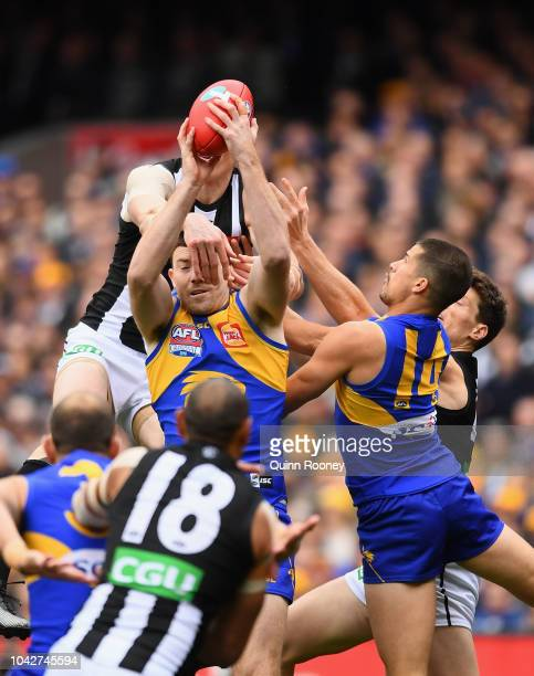 Jeremy McGovern of the Eagles marks infront of Mason Cox of the Magpies during the 2018 AFL Grand Final match between the Collingwood Magpies and the...