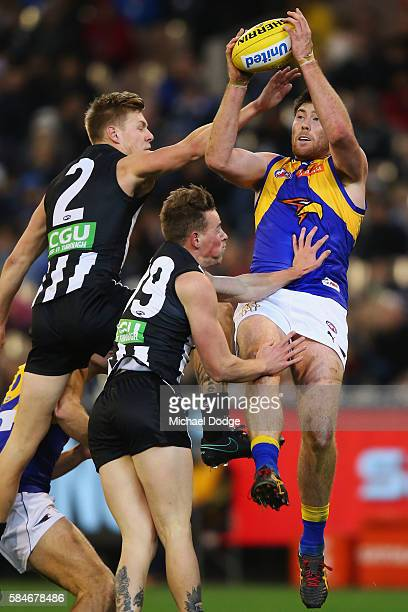 Jeremy McGovern of the Eagles marks the ball against Jordan de Goey of the Magpies and Ben Crocker during the round 19 AFL match between the...