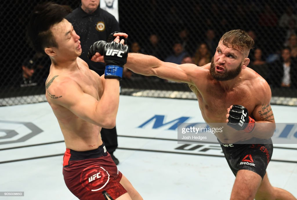 UFC Fight Night: Stephens v Choi