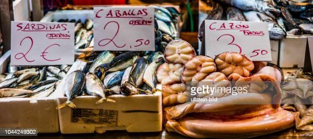 Jerez de la Frontera, Spanien, ESP, Andalusien, al-Andalus, historisches Zentrum, historisches Bauensemble, Hochburg des Sherry, Mauren, Markt,...