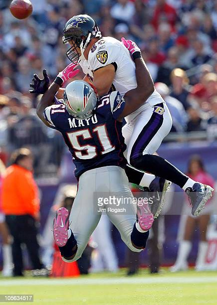 Jerod Mayo of the New England Patriots collides with Todd Heap of the Baltimore Ravens at Gillette Stadium on October 17 2010 in Foxboro Massachusetts