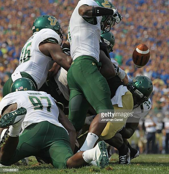 Jerrell Young of the University of South Florida Bulls strips the ball from Jonas Gray of the Notre Dame Fighting Irish near the goalline at Notre...