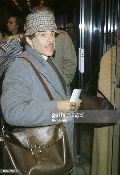 Jerry Stiller during Jerry Stiller Sighting in New York City January 1 1980 in New York City New York United States