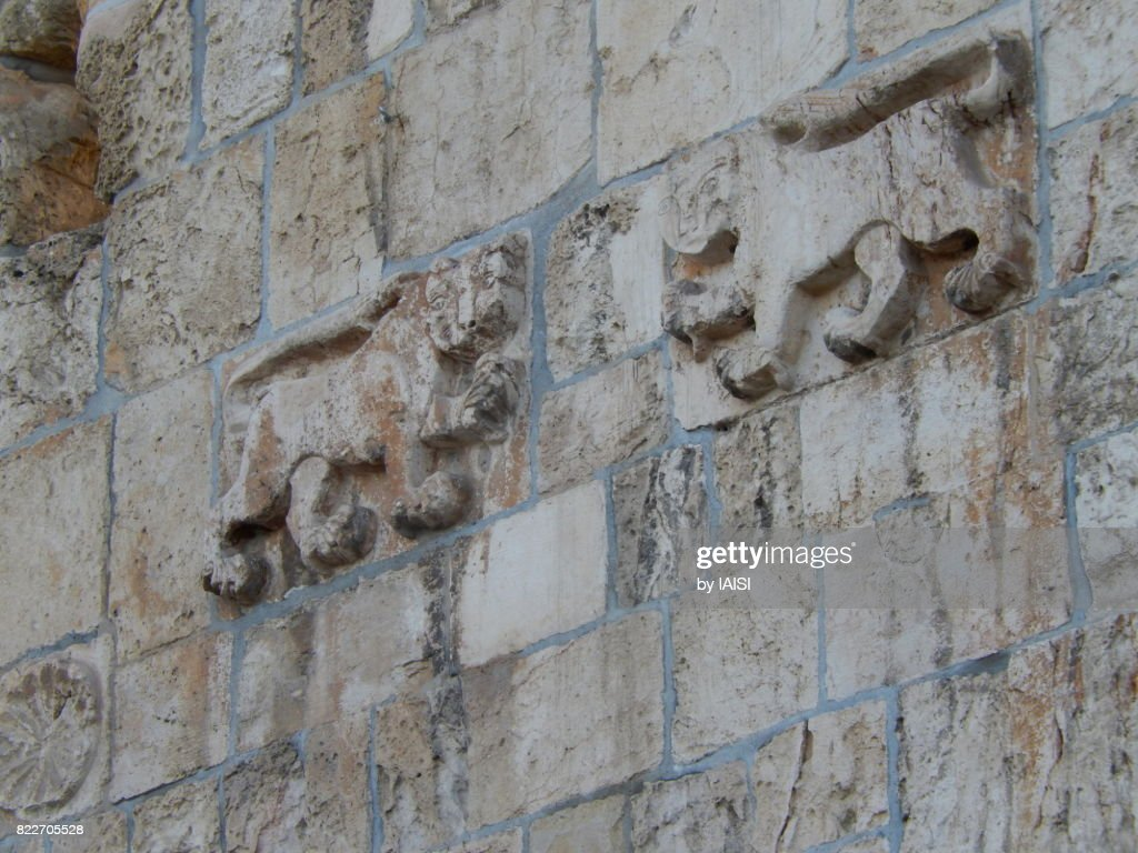 Jerusalem, detail of carving of Baybars' emblem on the Lions' Gate : Stock Photo