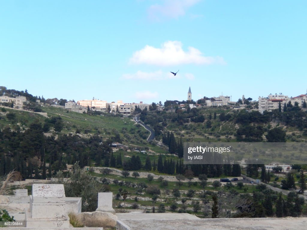 Jerusalem, seen from the Lions' Gate, a sharp descent and landscape of the hills surrounding the old city : Stock Photo