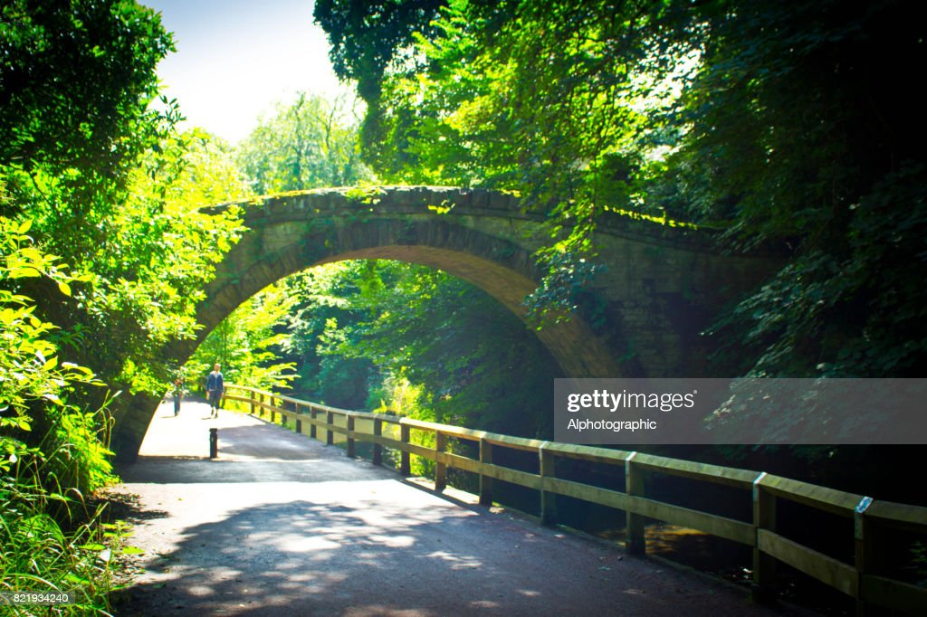 Jesmond Dene : Stock Photo