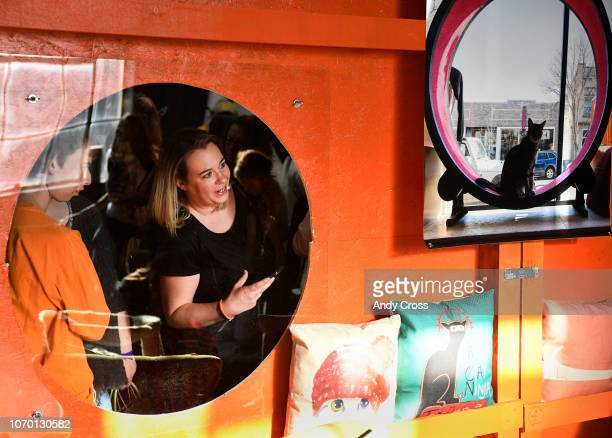 Jess Jones peeks into the Cat Cafe at the 1st annual Snowcats Cat Convention at the EXDO Event Center December 08, 2018. Denver Cat Company's Cat...