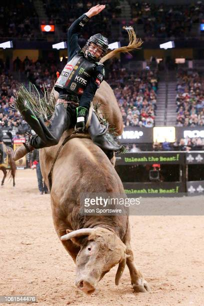 60 Top Cowboy Riding Bull Pictures, Photos, & Images - Getty Images