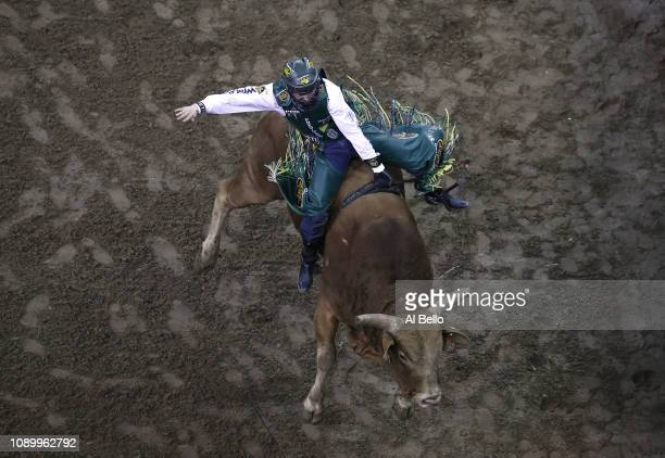 Jess Lockwood rides Udder Lover during the PBR Unleash the Beast bull riding event at Madison Square Garden on January 04 2019 in New York City