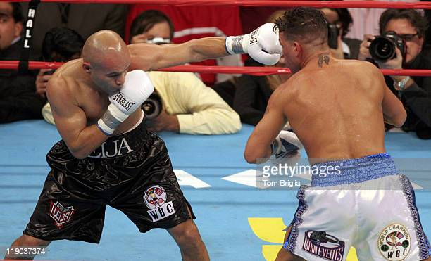 Jesse James Leija lands a left on Arturo Gatti during the fight on January 29 2005 at Boardwalk Hall in Atlantic City