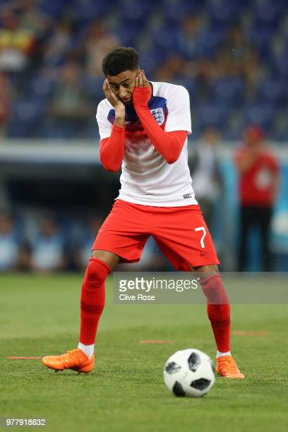 Jesse Lingard of England reacts after an insect lands on him ahead of the 2018 FIFA World Cup Russia group G match between Tunisia and England at...