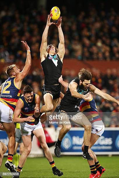 Jesse Palmer of the Power takes a mark during the round 22 AFL match between the Port Adelaide Power and the Adelaide Crows at Adelaide Oval on...