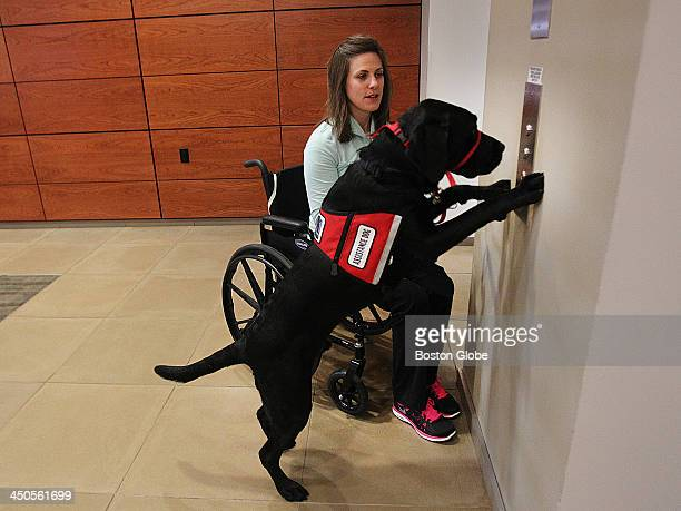 Jessica Kensky and her husband Patrick Downes each lost a leg at the Boston Marathon bombing Her new service dog is named Rescue This is for a story...