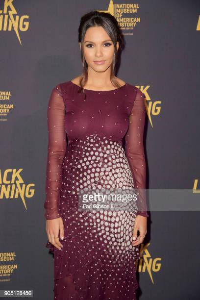 Jessica Lucas attends the 'Black Lightning' World Premiere at National Museum Of African American History Culture on January 13 2018 in Washington DC