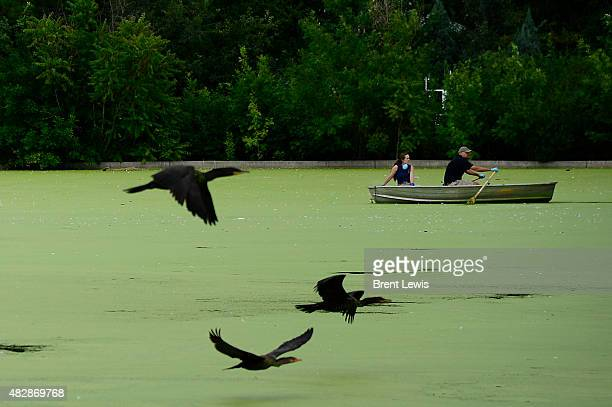 Jessica Meehan and Chris Munch paddle across lake after cleaning up a small island in the lake August 3 2015 in City Park The lake coowned by the...