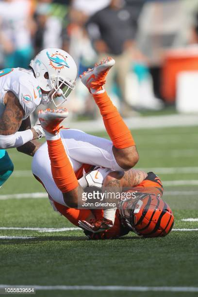 Jessie Bates of the Cincinnati Bengals hauls in the interception in front of Kenny Stills of the Miami Dolphins during their game at Paul Brown...