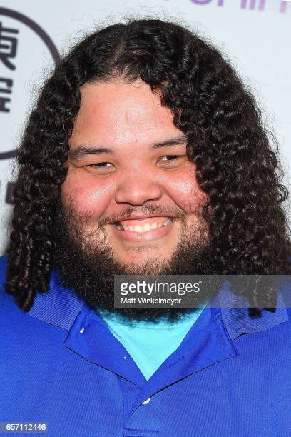 Jessie Negron attends Funimation Films presents 'Your Name' Theatrical Premiere in Los Angeles CA at Yamashiro Hollywood on March 23 2017 in Los...