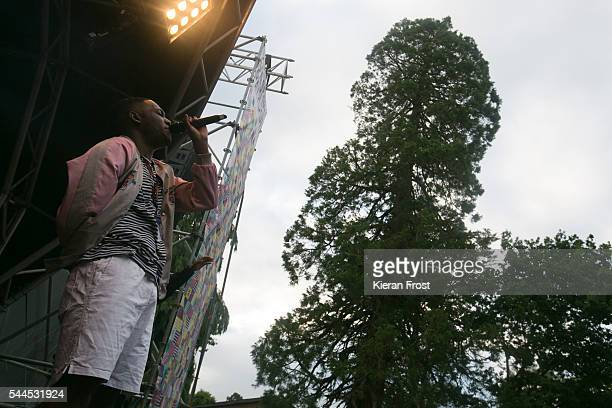 Jessy Rose of Hare Squead performs at CastlePalooza at Charville Castle on July 2, 2016 in Tullamore, Ireland.