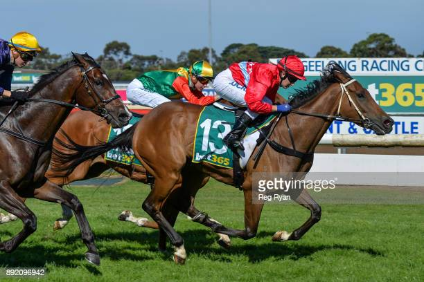 Jester Halo ridden by Christine Puls wins the IGA Liquor Christmas Cheer BM70 Handicap at Geelong Racecourse on December 14 2017 in Geelong Australia