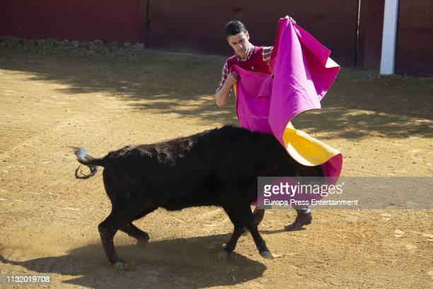 60 Top Tauromaquia No Pictures, Photos and Images - Getty Images
