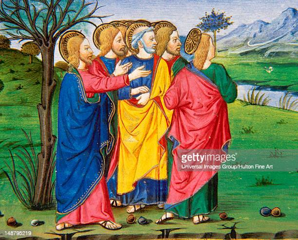 Jesus and his disciples going along the barren fig tree Codex of Predis Royal Library Turin Italy