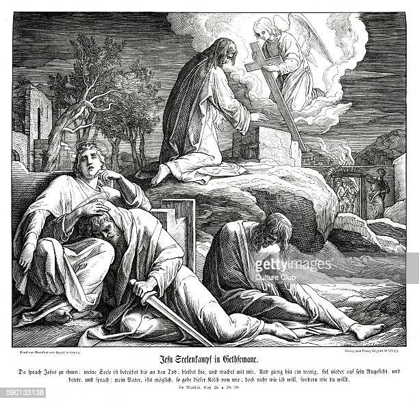 60 Top Garden Of Gethsemane Pictures Photos And Images Getty Images