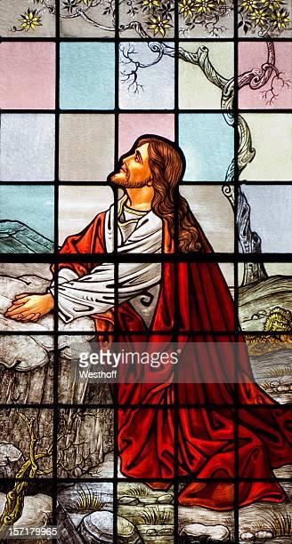 jesus in the garden - garden of gethsemane stock pictures, royalty-free photos & images