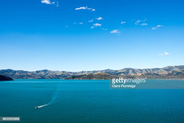 jet ski in akaroa harbour, new zealand - claire plumridge stock pictures, royalty-free photos & images