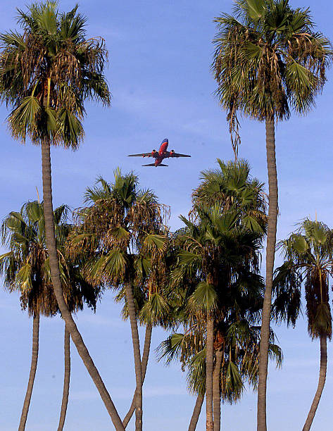 A jet takes off from John Wayne Airport framed by palm trees over ...