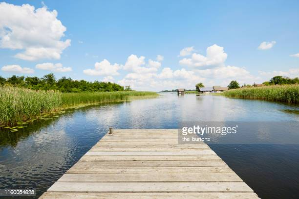 jetty at idyllic lake with reed grass against blue sky, clouds are reflected in the water - jetty stock pictures, royalty-free photos & images