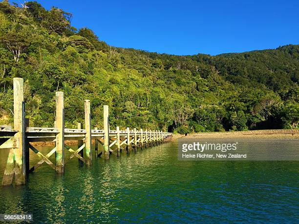 Jetty at ship Cove, Queen Charlotte Ttack