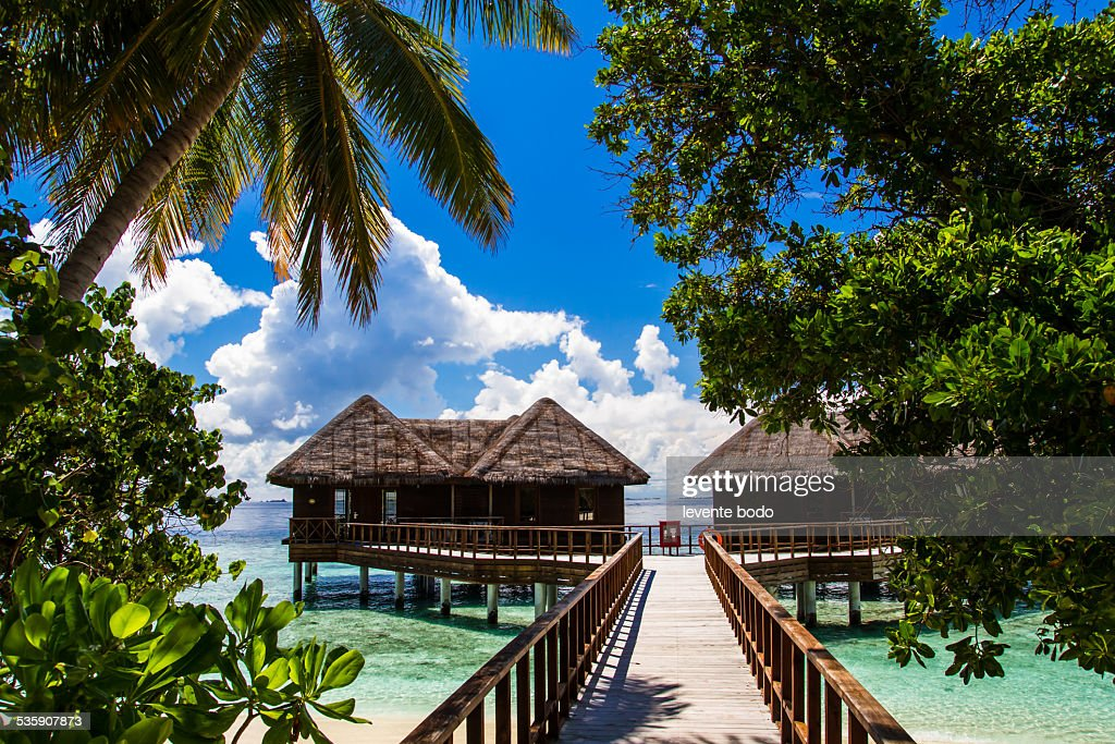 Jetty, beach and jungle - vacation background : Stock-Foto