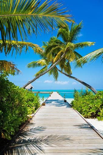 Jetty in Maldives, Herathera island, Addu atoll, Maldives 1031317238