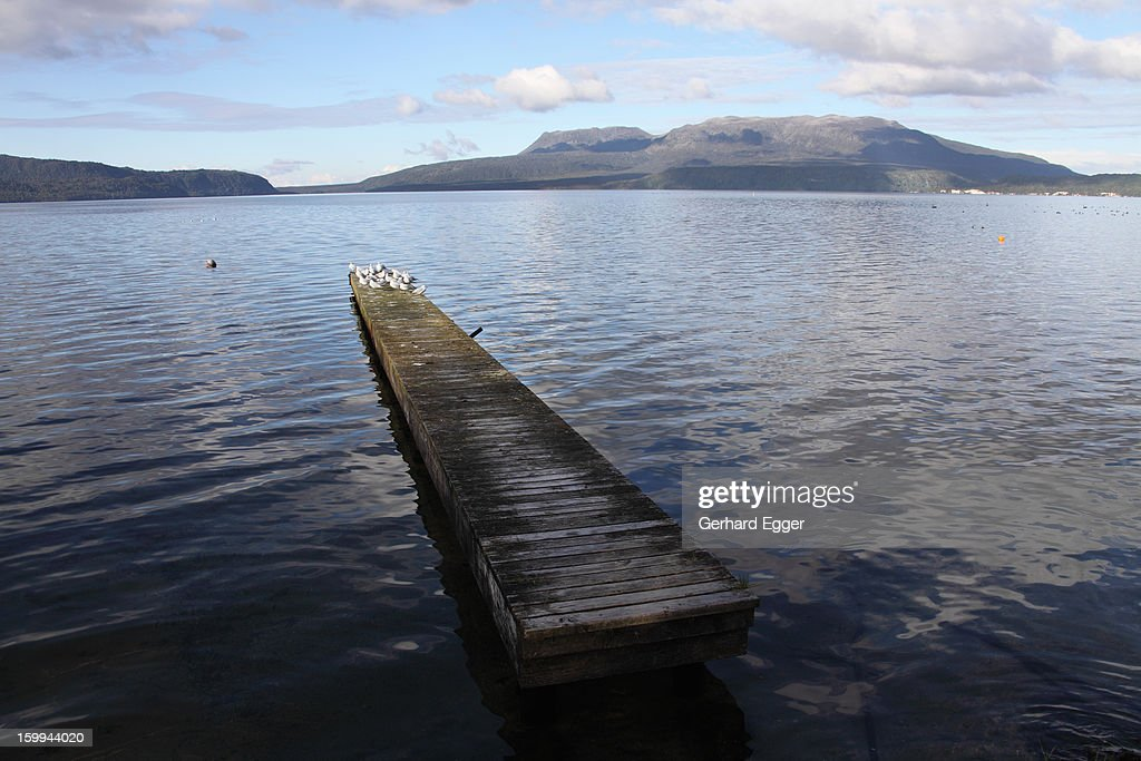 Jetty on Lake Tarawera : Stock Photo
