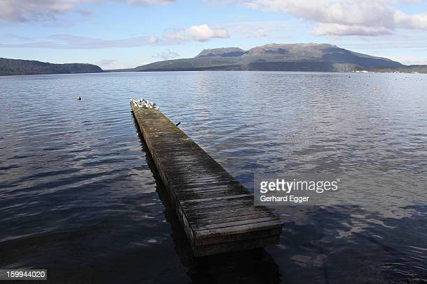 Jetty on Lake Tarawera