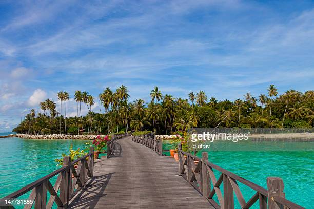 jetty on mabul island, sipadan, borneo malaysia - sabah state stock pictures, royalty-free photos & images