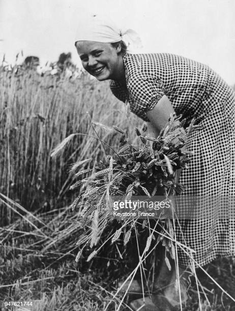 Jeune femme tout sourire coupe les blés dans un champ en Allemagne en 1935