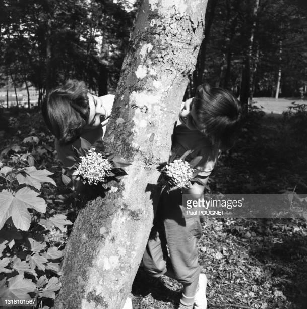 Jeunes filles cueillant le muguet dans une forêt, circa 1960.