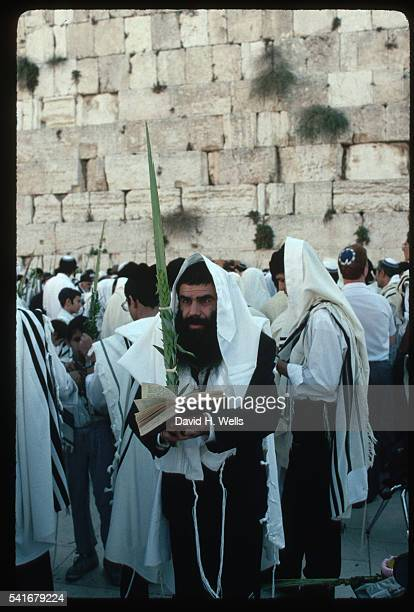 jew at western wall during sukkoth - jewish prayer shawl stock pictures, royalty-free photos & images