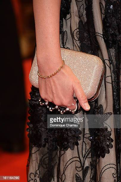 Jewellery and purse detail of actress Rosa Enskat as she attends the 'Gold' Premiere during the 63rd Berlinale International Film Festival at...