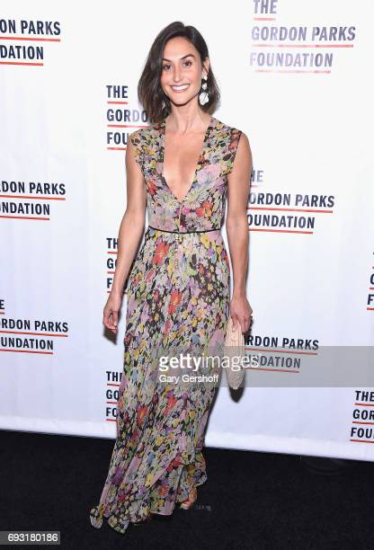 Jewelry designer Danielle Snyder attends the 2017 Gordon Parks Foundation Awards gala at Cipriani 42nd Street on June 6 2017 in New York City