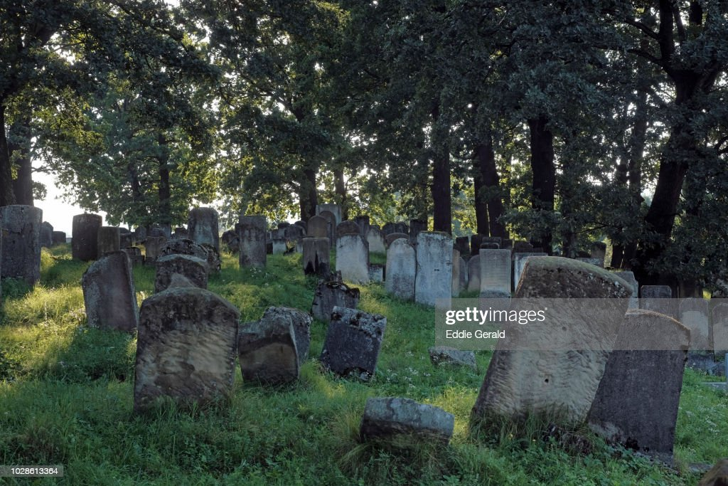 Jewish cemeteries in Ukraine : Stock Photo