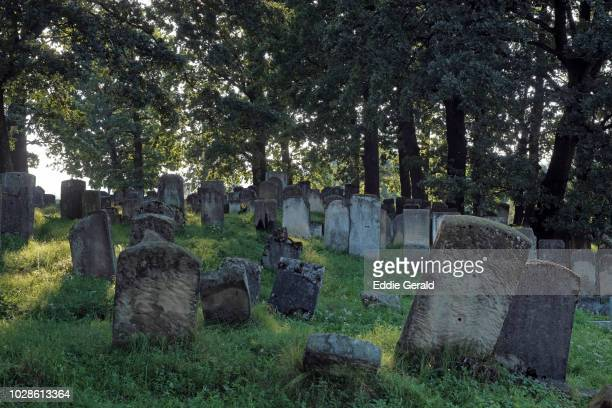 jewish cemeteries in ukraine - cemetery stock pictures, royalty-free photos & images