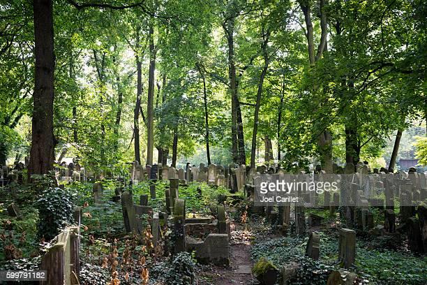 Jewish cemetery in Krakow, Poland